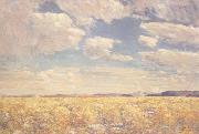 Childe Hassam Afternoon Sky,Harney Desert (mk43) oil painting picture wholesale