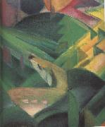 Franz Marc Details of The Monkey (mk34) oil painting picture wholesale