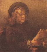 REMBRANDT Harmenszoon van Rijn Titus Reading (mk33) oil painting picture wholesale