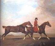 STUBBS, George William Anderson with Two Saddle Horses (mk25) oil painting picture wholesale