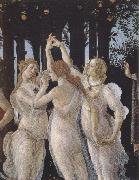 Sandro Botticelli La Primavera (mk39) oil painting picture wholesale