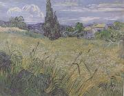 Vincent Van Gogh Green Wheat Field with Cypress (nn04) Spain oil painting artist