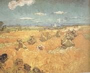 Vincent Van Gogh Wheat Stacks wtih Reaper (nn04) oil painting picture wholesale