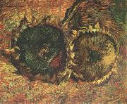Vincent Van Gogh Two Cut Sunflowers (nn04) oil painting picture wholesale