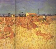 Vincent Van Gogh Harvest in Provence (nn04) oil painting picture wholesale