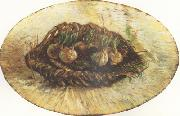 Vincent Van Gogh Basket of Sprouting Bulbs (nn04) oil painting picture wholesale