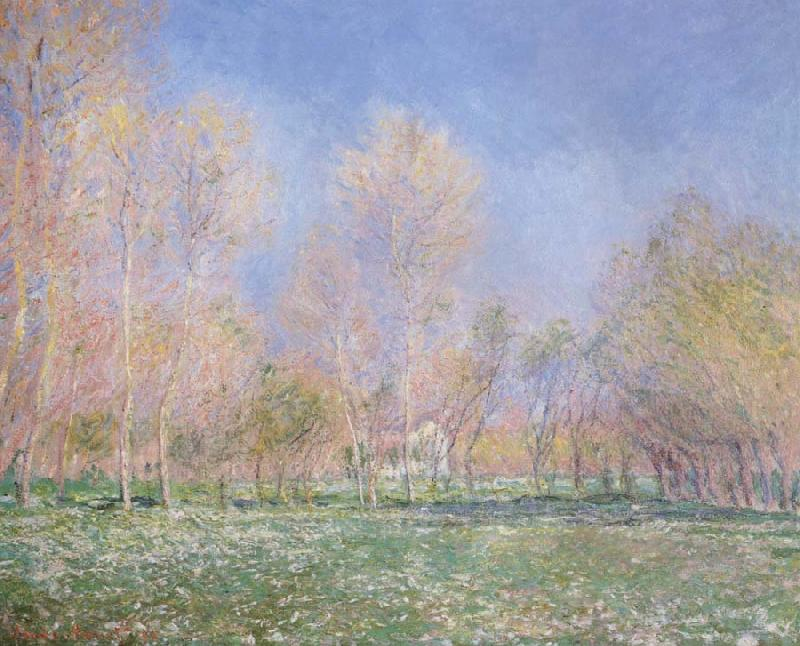 Claude Monet Spring in Giveryny oil painting picture