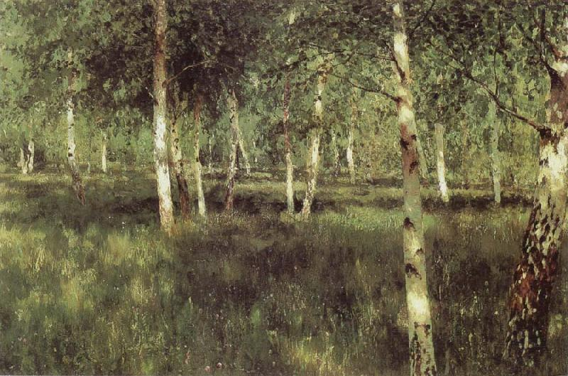 Isaac Levitan Birch Plantation oil painting picture