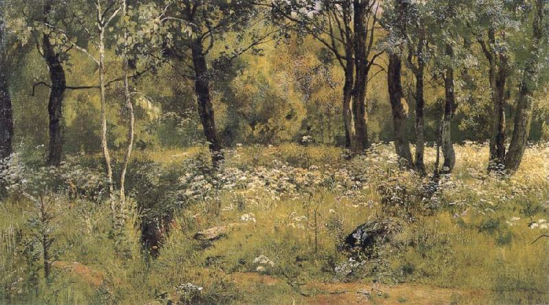 Ivan Shishkin The lawn in the forest oil painting picture