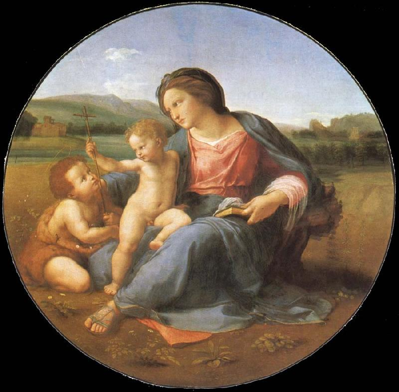 Alba Madonna Painting by Raphael