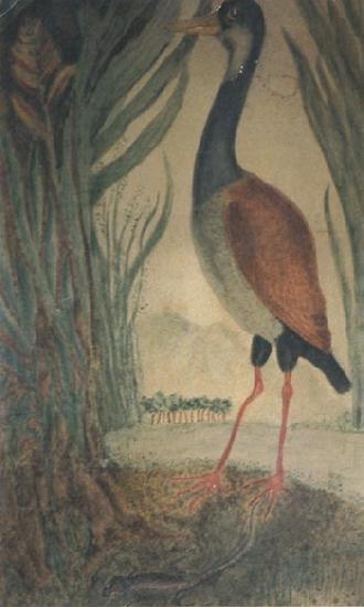 Henri Rousseau Wader oil painting image