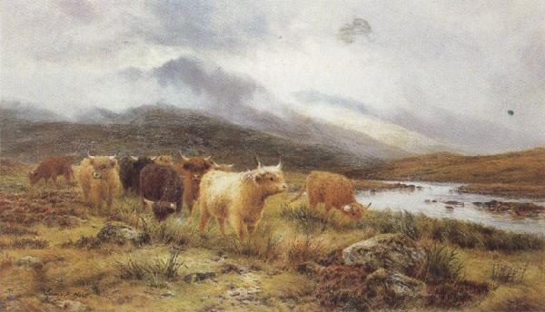 Louis bosworth hurt Highland Cattle on the Banks of a River (mk37) oil painting image