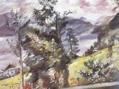 Lovis Corinth Walchensee,View of the Wetterstein (nn02) oil painting image