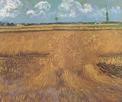 Vincent Van Gogh Wheat Field with Sheaves (nn04) oil painting image