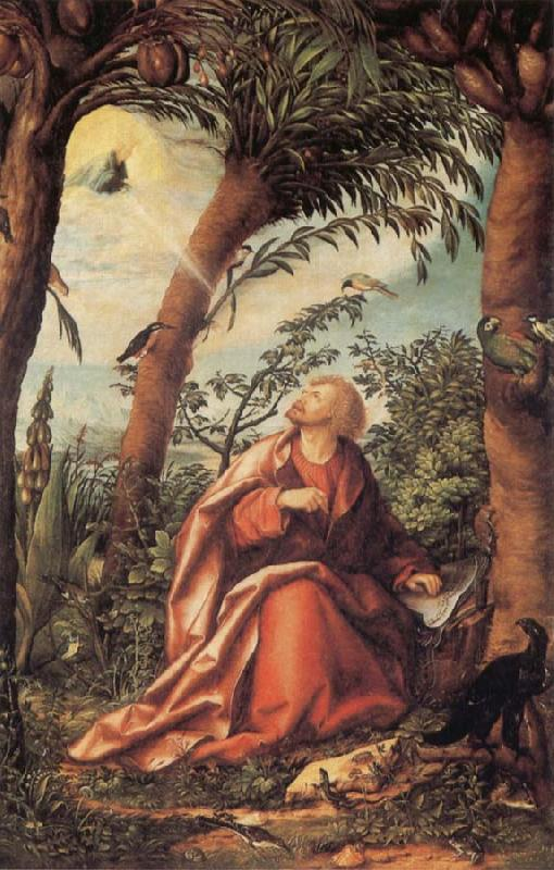 BURGKMAIR, Hans John the Evangelist on Patmos oil painting image